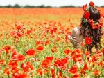Poppy Field Dream