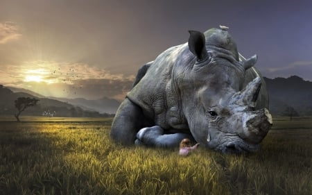 Sad Rhino - fantasy, little girl, tears, copil, rhino, creative, dsad, animal