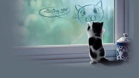 Missing You - table, glass, window, drawing, black and white, missing you, cat