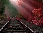 Railways at Autumn