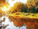 Autumn river at sunny day
