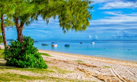 Exotic beach - exotic, view, ocean, beautiful, palms, sea, beach, boats, paradise, summer, tropics, sands