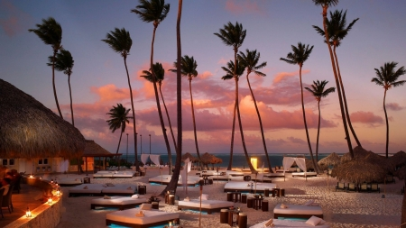 paradise Rosort - chairs, resorts, evening, palm trees