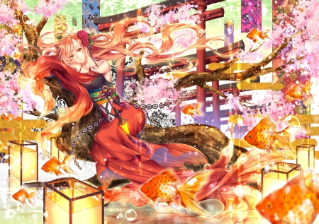 ♥ - sakura, frumusete, luminos, fish, orange, kirisita, manga, spring, cherry blossom, vara, girl, anime, summer, pink
