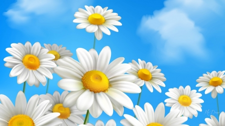 Daisies Deluxe - Firefox theme, flowsers, spring, clouds, sky, floral, daisies, summer, garden, chamomile, blue