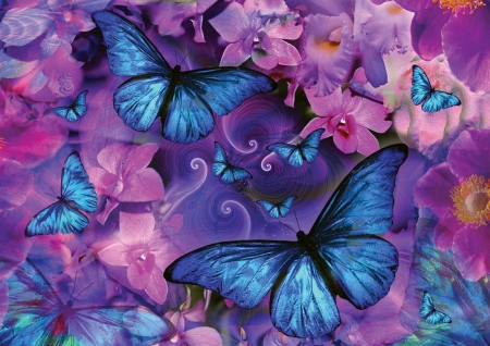 Butterflies - luminos, vara, butterfly, fluture, texture, papillon, flower, summer, pink, blue