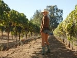 Cowgirl in a Vineyard