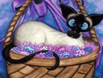 Siamese Cat Baskets