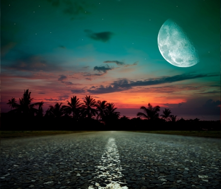 Fantasy Moon - palmtrees, colors, sunset, road, sky