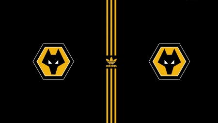 NEW Wolves & Adidas