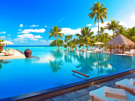 Paradise on Earth - Sea, Luxury, Palms, Relaxing, Resort