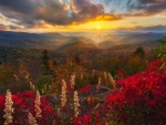 Golden Sunset Over The Blue Ridge