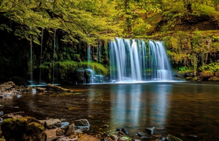 Forest waterfall - foirest, waterfall, beautiful, reflection, trees