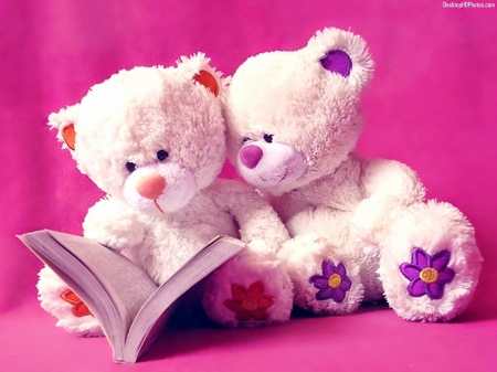 Cute Teddies Read A Book 3d And Cg Abstract Background