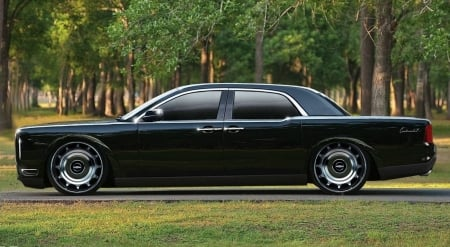 lincoln continental - continental, tree, grass, car, lincoln