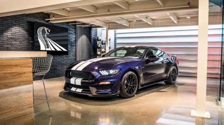 2018 Ford Mustang Shelby GT350 - Mustang, Ford, car, auto, 2018, 2018 Ford Mustang Shelby GT350, Shelby, GT350