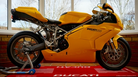 Ducati at Home - show, sport, transport, new, yellow, room, bike, ducati