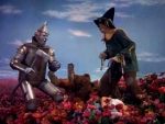 The Poppy Field Wizard Of Oz Movie