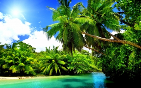Tropical Landscape Beaches Nature Background Wallpapers On