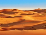 Shadowy Desert Sands