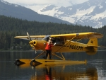 Seaplane and Mickey Mouse