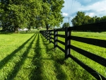 Kentucky Country Fence