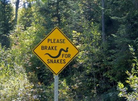 Brake For Snakes Sign - Brake For Snakes, Trees, Summer, Sign, Abstract, Photography