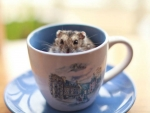HAMPSTER IN A CUP