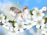 Sweet Birds and Apple Blossoms
