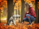 Autumn Girl With Dog