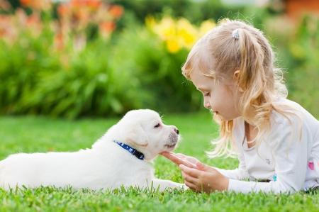 Little Girl - Smile, Puppy, Girl, Dog