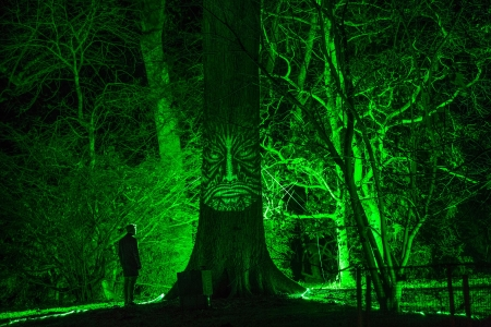 Enchanted Christmas - Westonbirt Arboretum, Gloucestershire, Tetbury, Enchanted Christmas, Light show, Britain, England