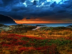 Colorful Landscape with Clouds