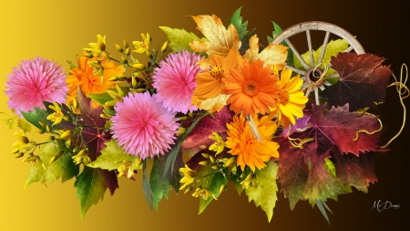 Flowers for Fall , Flowers \u0026 Nature Background Wallpapers on
