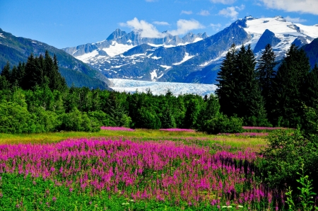 Alaskan Mountains In Summer