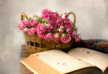 A Basket Full of Pink Roses - life, book, still, roses, old, baby, pink