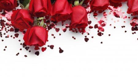 Red Roses , Flowers \u0026 Nature Background Wallpapers on