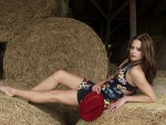 Laying In The Hay . .
