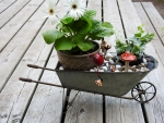 Gerberas In A Wheel-Barrow