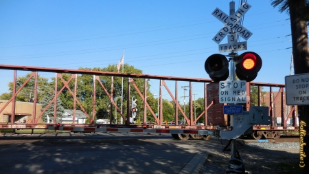 Train at the Grade Crossing - cars, train, grade signal, blue sky, grade crossing, Traffic Signals nSigns