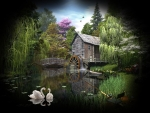 Watermill Collage