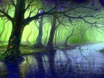 Enchanted Forest Stream