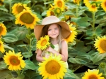 Little Girl between Sunflowers