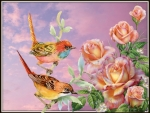 LITTLE BIRDS AND ROSES