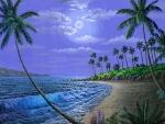 Hawaiian Beach at Moonlight