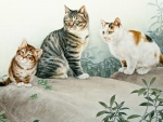 Three Cinese Cats
