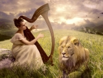Soothe The Wild Lion