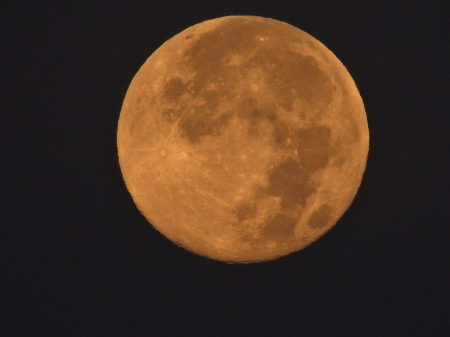 Super Moon - Super Moon, Moon, Sky, Space, Photography