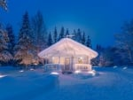 White House in Winter Forest