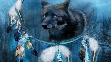 Dream Catcher - wildlife, wolf, artwork, feather